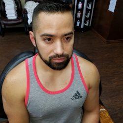 Fresh Haircut